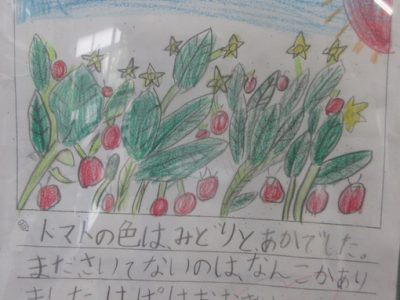 学習の記録 2年生