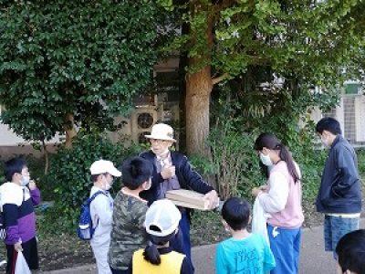 安行小の秋を食べよう! 10月25日(日)エコクラブ