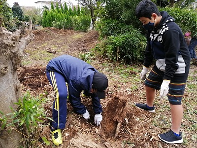 美化作業お手伝い エコクラブ  11月1日(日)