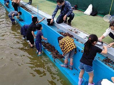 ヤゴ救出大作戦 5月16日(日) エコクラブ