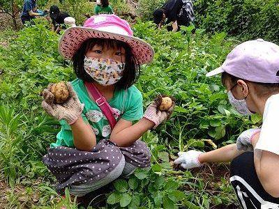 ジャガイモ収穫 ジャガバターに挑戦!6月13日(日)エコクラブ